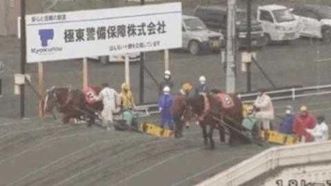 【動画】ばんえい競馬…