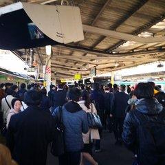 湘南新宿ライン 混雑