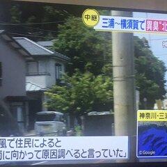 横須賀 異臭